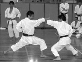 Иппон в шотокан каратэ по определению Микио Яхара
