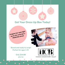 Dress Up Boxes!