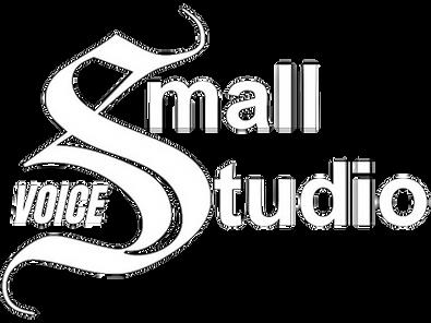 Small Voice Studio Logo White.png