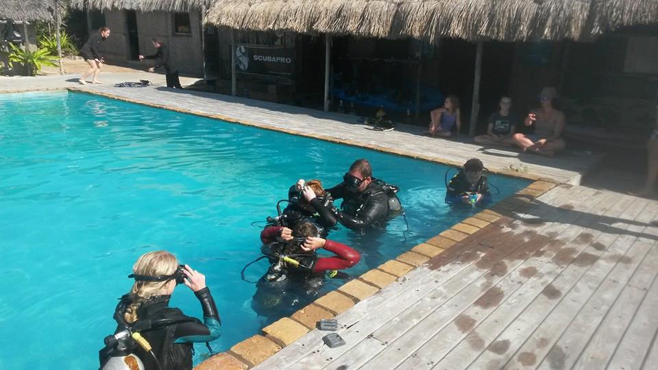 learn to scuba.jpg
