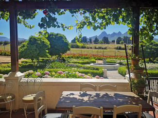 View from our beautiful patio