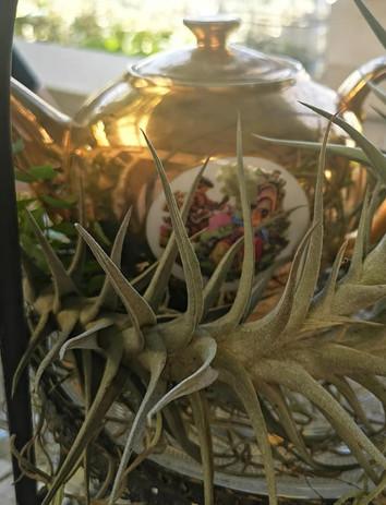 Botanical inspired