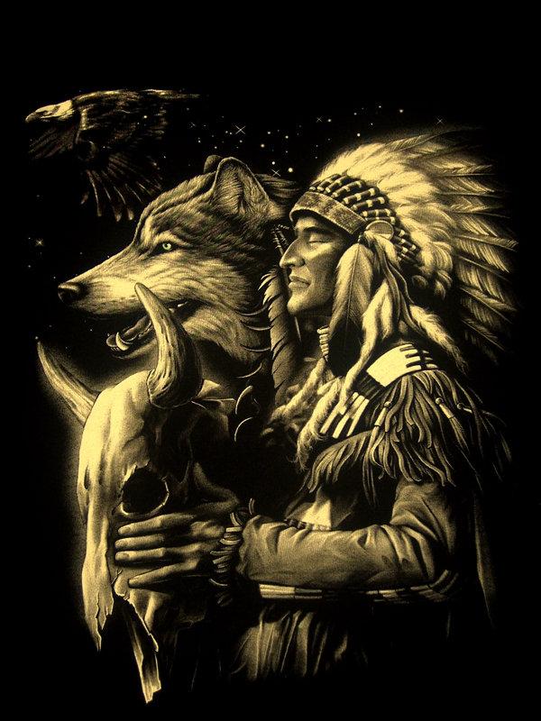 American_Native_by_zoundsheeler.jpg