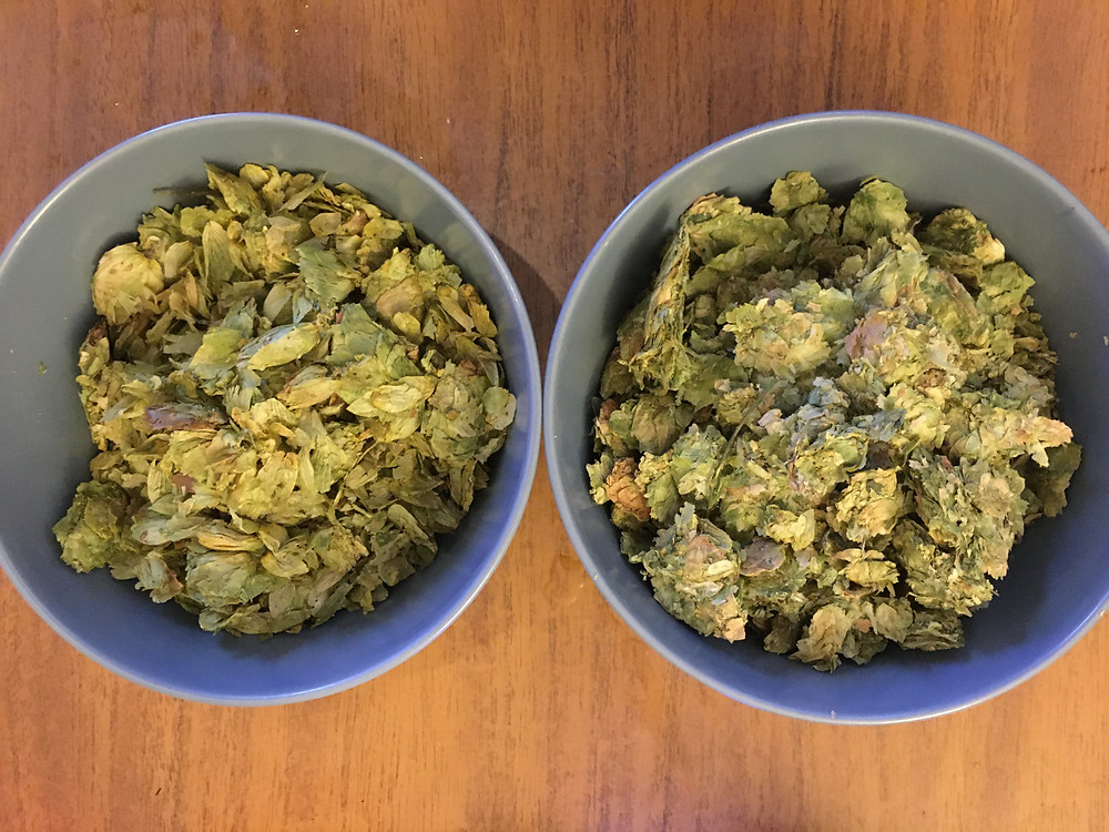 Amarillo and Citra dry hop