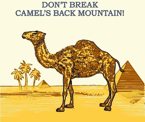 Marf Loth - Don't Break Camels Back Mountain! (cassette soft pack)
