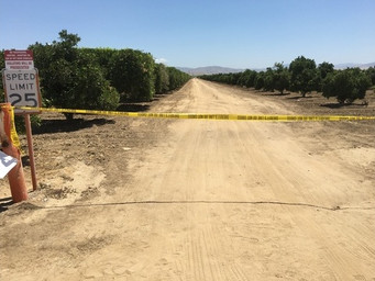 Burned Body Found in Bakersfield Orchard