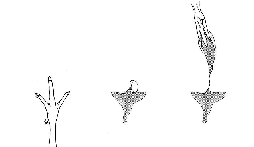 Movement scheme .jpg