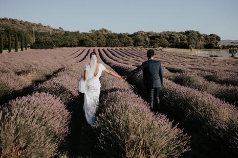 photographe-mariage-provence-lavandes.jp