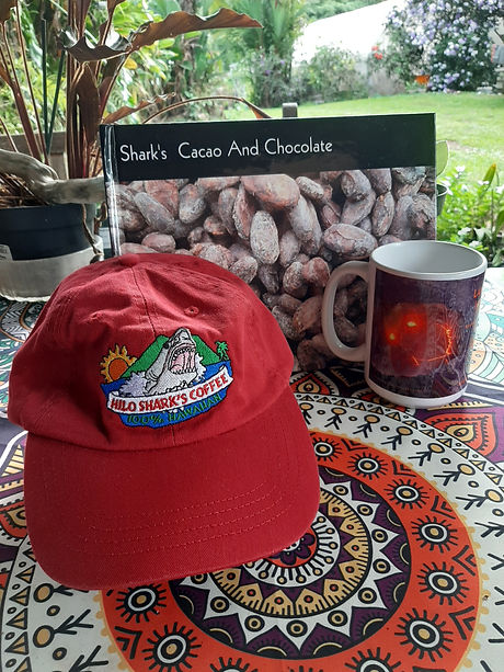 hat and cup.jpg