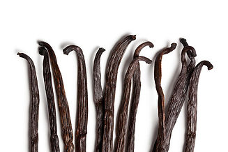vanilla dry beans closeup.jpg