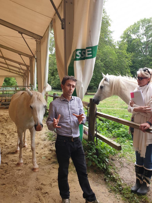 Le cheval: révélateur de potentiel