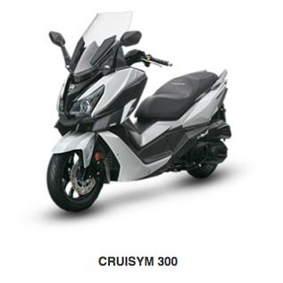 CRUISYM 300