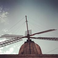 X242 - The Xarolla Windmill Project