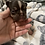 Thumbnail: Miniature Chocolate and Tan girl