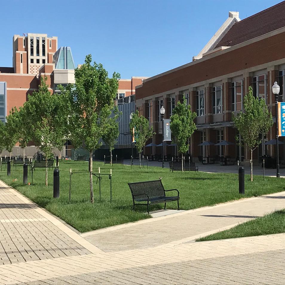 Commercial Landscape Design   Native Design & Hardscape