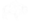 buffalo plain white.png