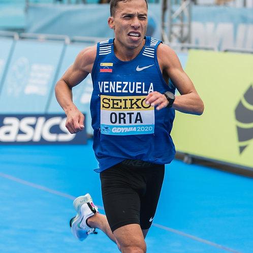 Venezuelan Nike Official Blue Race Singlet