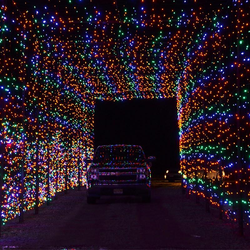 Skyland Christmas Light Show and Village