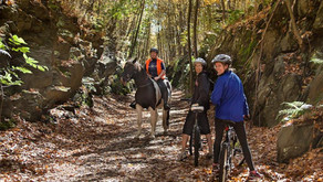 Top 10 Rail Trails In New Jersey!