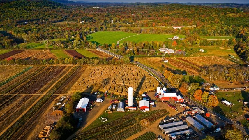 Dog Friendly Farm and pumpkin picking ort farms new Jersey
