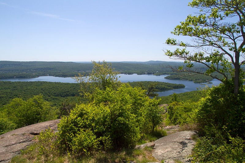 Norvin Green State Forest