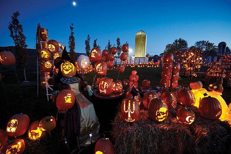 Pumpkin Trail In New Jersey