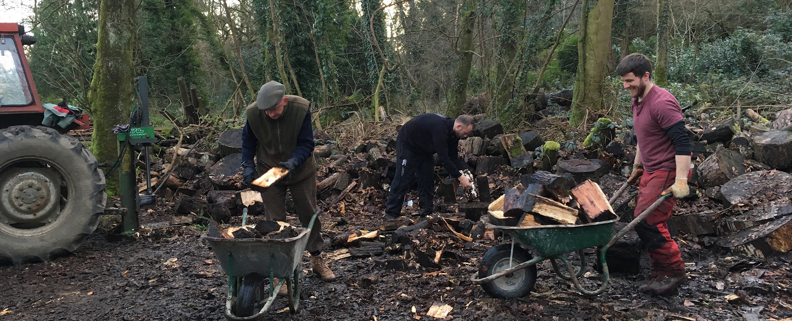Logs at Stradey Castle