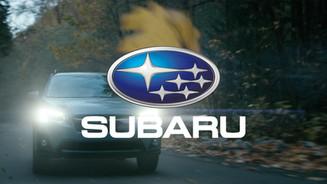 Subaru - Skyline
