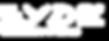 logo EYDE 02.png