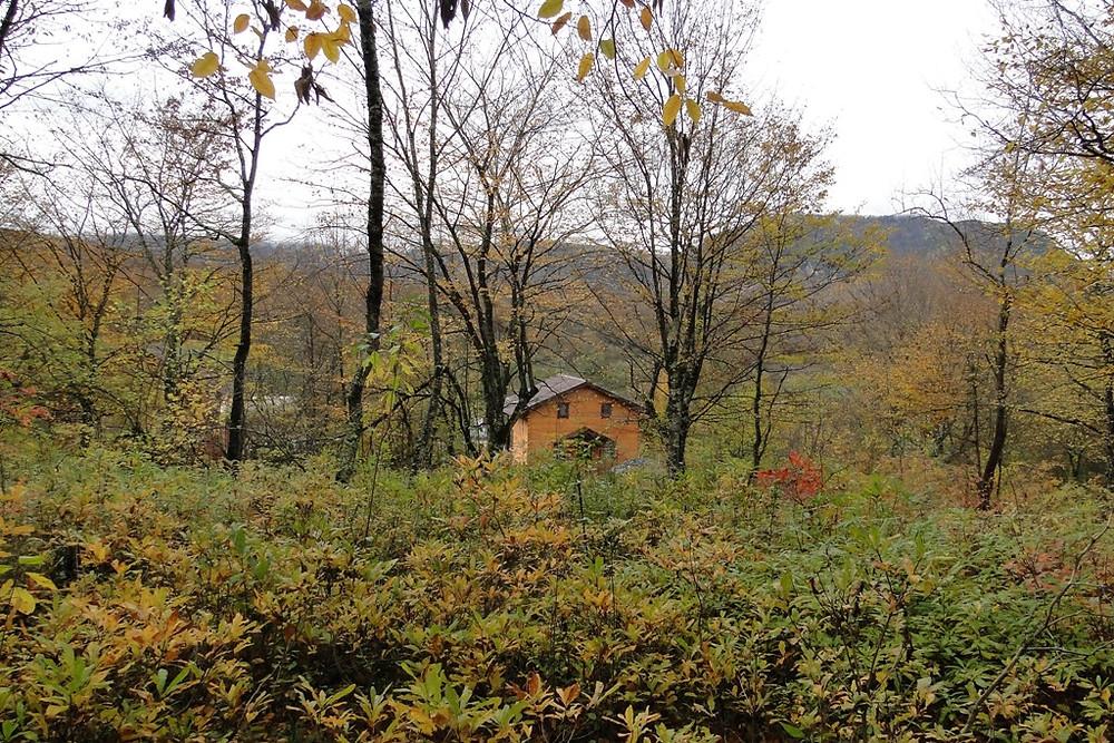 Золотая осень в Адыгее