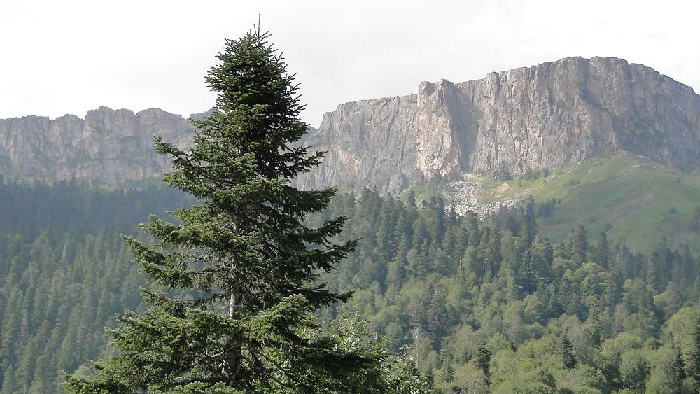 Гора Тхач.