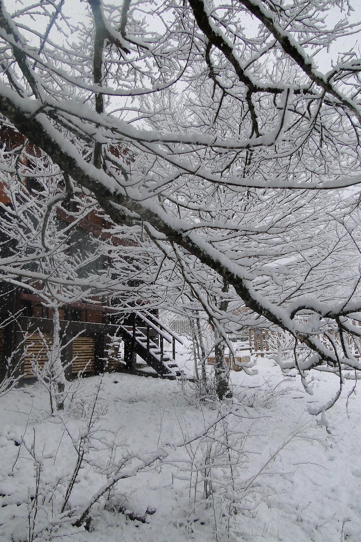 Гостевой дом Дрозды в Адыгее