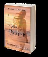 3D-Sea Prayer.png