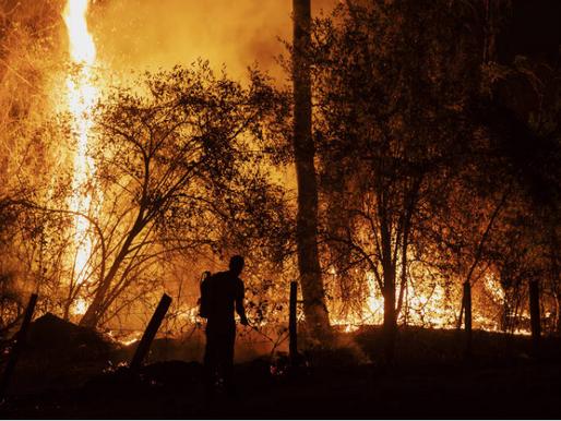 Inferno no Pantanal e Amazônia
