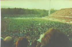 1982 dinaqmo.