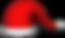 christmas cap.png