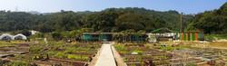 Living Farm 生活農莊 場地一覽
