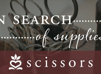 In Search of Supplies: Scissors