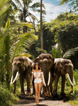 Shooting with elephants and Ailien in Bali