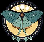 LT_Auditorium logo_moth.png