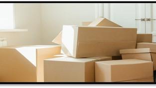 Tetra Pak highlights packaging industry's key 2021 conundrum