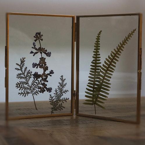 Herbarium 001