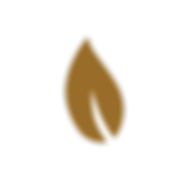 CL 19-12-20 Leaf Icon Gold.png