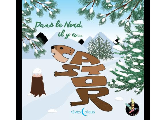 Dans le Nord, il y a Castor (hiver)