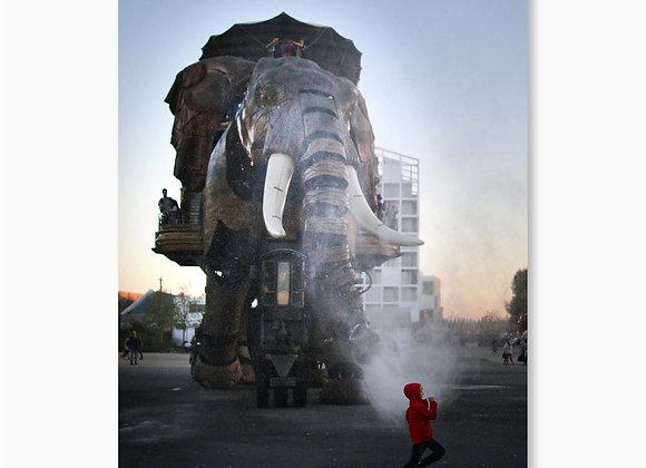 Eléphant et enfant