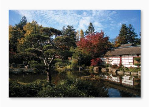 Le jardin japonais de l'île de Versailles à Nantes