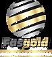 LOGO - FASGOLD COREL DRAW.png
