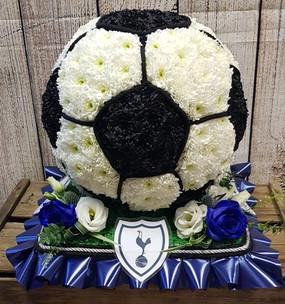 Football 3D Tottenham