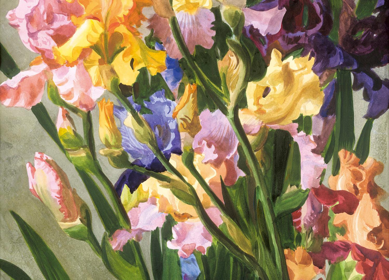 A bouquet of multicolored irises, 2012
