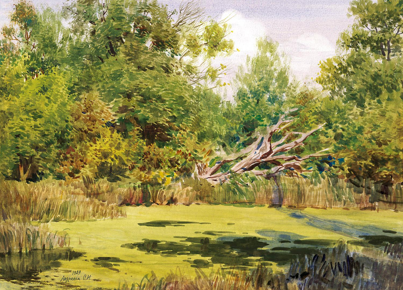 Summer pond, 1989